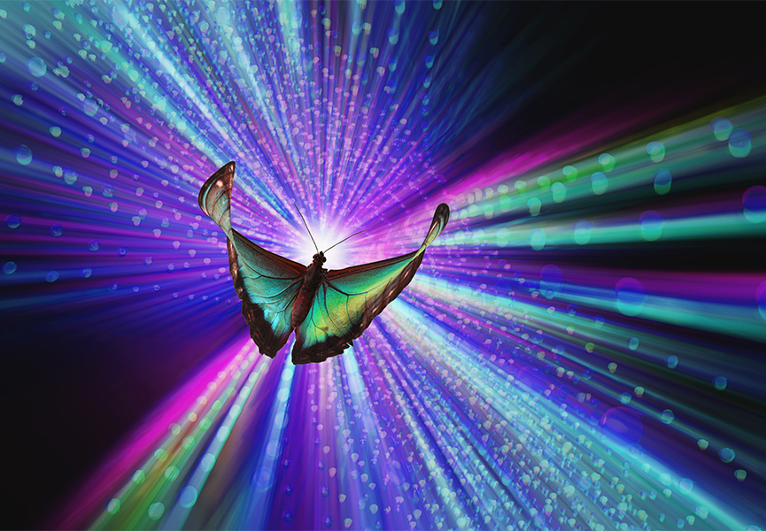 A vividly colored butterfly flies towards a zooming stream of glowing particles in an image about VR