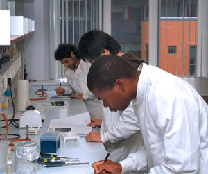 Image: students in lab