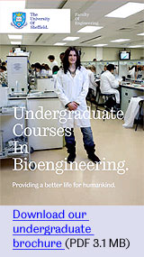 Download our undergraduate brochure for bioengineering