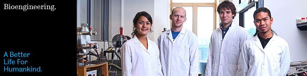 Image: bioengineering students