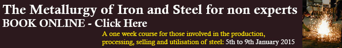 The Metallurgy of Iron and Steel for non experts - Book Online