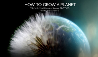 How to grow a planet image