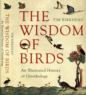 image of Wisdom book cover