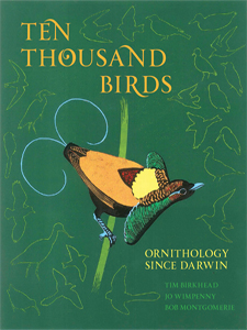 Ten Thousand Birds book cover