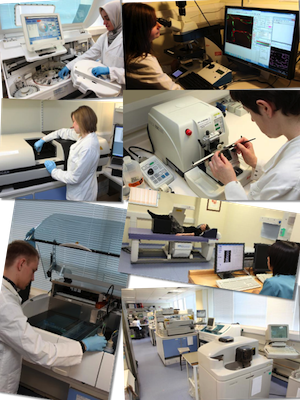 Images of people working in labs