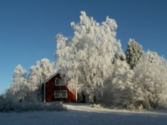 Photograph of red Swedish house in snow