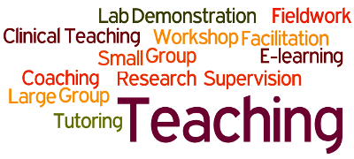 Wordle image describing teaching