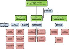 Department Structure Chart