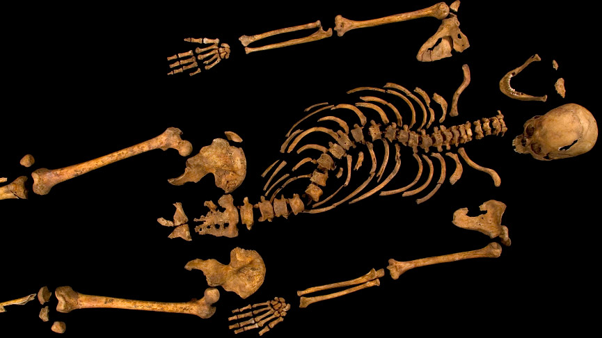 Radiocarbon dating results on bones