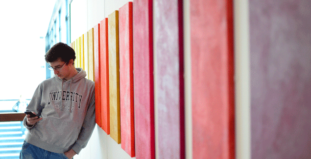Student on smartphone leaning on a coloured wall.
