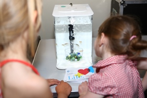 Two girls finding out about research involving zebrafish
