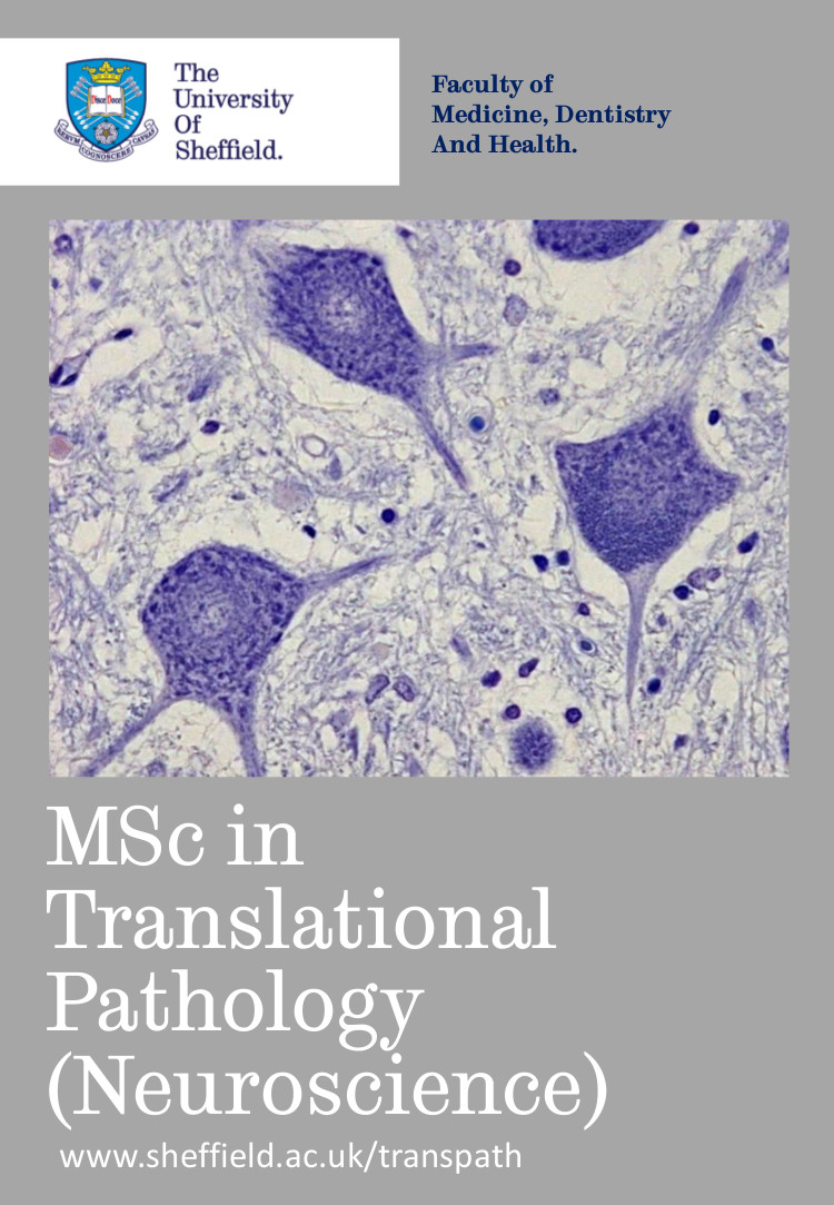 Translational Pathology brochure front page