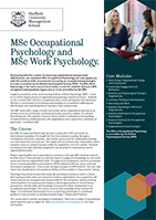 Institute of Work Psychology Sheffield