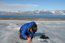 Sampling microbial communities on a glacier