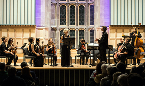 image of Chamber orchestra