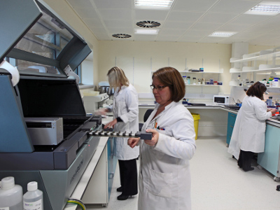 Laboratory at SITraN