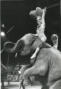 Billy Smart Summer Circus 1970