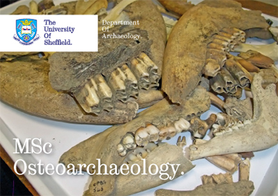 MSc Osteoarchaeology postcard
