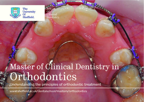 orthodontics small