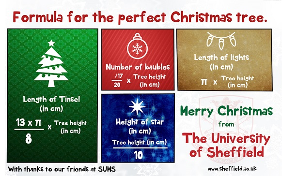 Treegonometry Maths Students Have The Solution For Decorating The