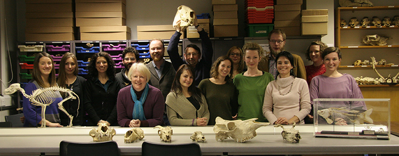 Zooarch team image 1