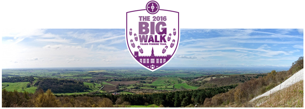 The Big Walk 2016