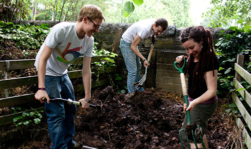 Image of students volunteering in the community