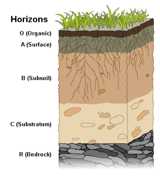 Soil horizons soil facts soil secret agents the for What makes up soil