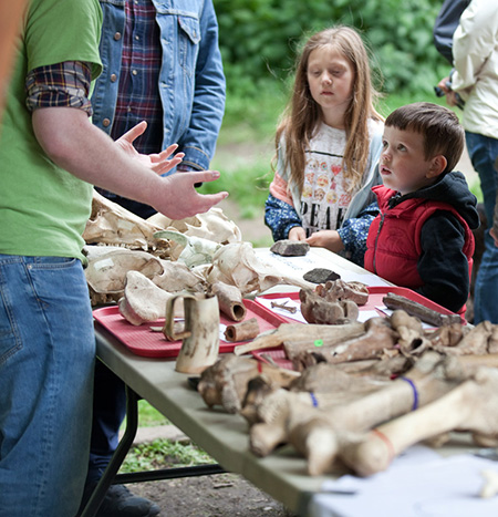 A student teaches children about animal skulls