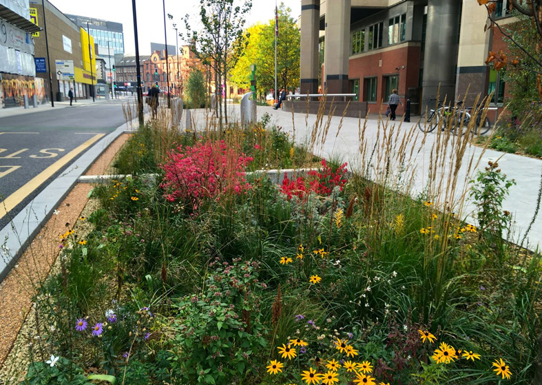 Landscape sheffield : Green wins most outstanding project at the sheffield design awards