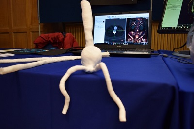 3D printed anatomy was a feature of the VPH-CaSE contribution to the Researchers Night.