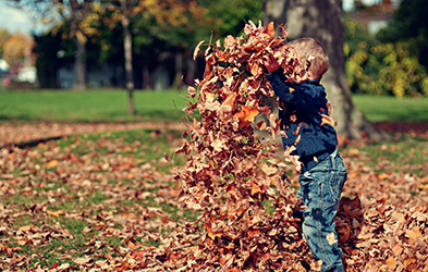 Photo of a child playing with leaves