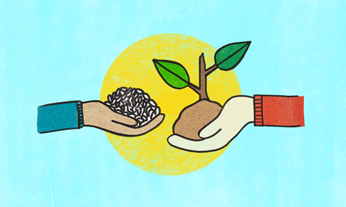 Illustration of hand holding rice with sunshine in background