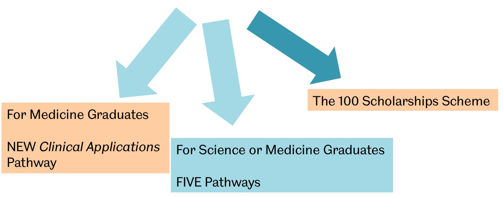 Clinical Applications pathways