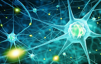 New Discovery In Motor Neurone Disease And Dementia Could