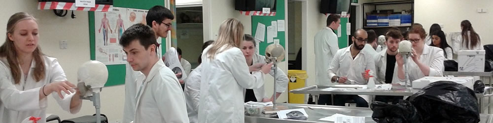 Msc Human Anatomy With Education Masters Courses Study With Us