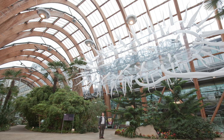 The giant floating E.coli sculpture in the Winter Gardens.