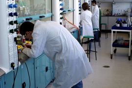 Picture of students in a chemistry laboratory