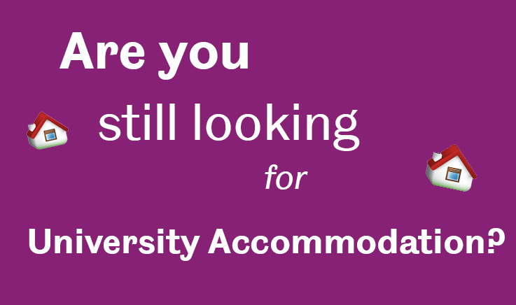 are you looking for university accommodation