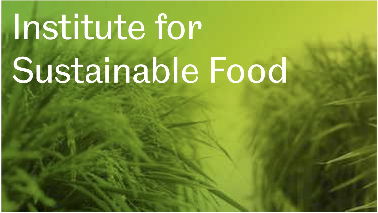 Institute for Sustainable Food