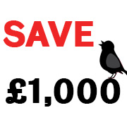 Early Bird Accommodation Offer
