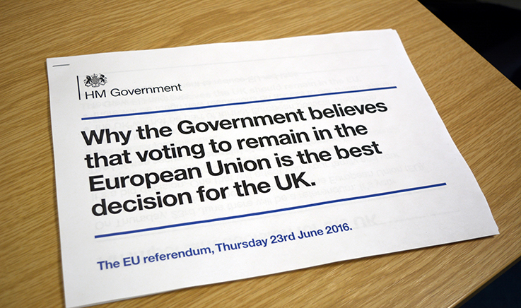 Photo of Government EU leaflet