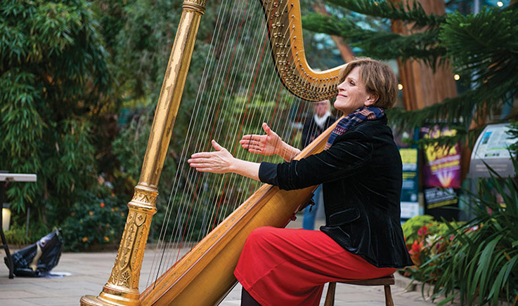 Performance in Sheffield's Winter Garden, image courtesy of Scott Hukins