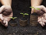 nurturing sustainable finance