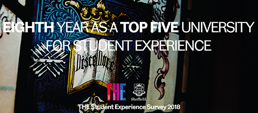 THE Student Experience Survey