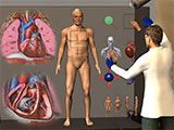 Computer generated image of human body © Virtual Physiological Human