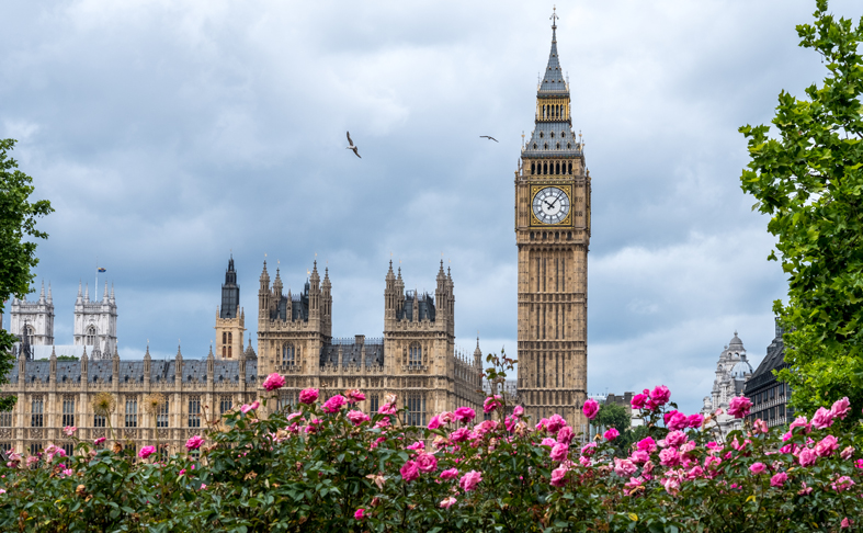 'Don't Ignore the Value of Urban Green Space', Ross Cameron Urges MPs and Peers