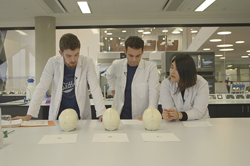 Msc Human Anatomy With Education Students Achieve Fellowship Of The