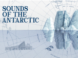 Sounds of the Antarctic