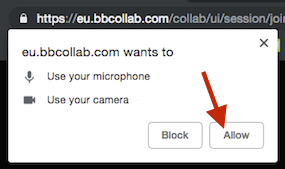 Screenshot showing Collaborate browser permissions